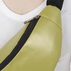 Сумка поясная, отдел на молнии, цвет зелёный - фото 65112