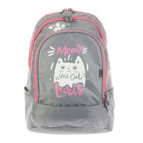 Рюкзак молодёжный, Luris «Спринт», 42 х 28 х 20 см, эргономичная спинка, для девочки «Кот»