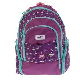 Рюкзак молодёжный, Luris «Флай», 41 х 28 х 20 см, эргономичная спинка, «Фламинго»