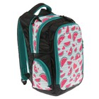 Рюкзак школьный, Luris «Тайлер», 40 х 29 х 17 см, эргономичная спинка, «Арбузы», чёрный/белый - фото 742813