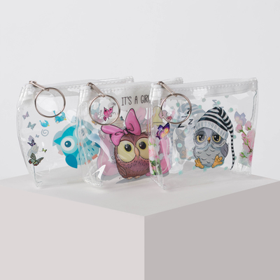 Purse 13-01-07 Owls, 10*3*8 Department with zipper, with ring, transparent