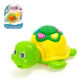 Игрушка «Озорная черепаха», с проектором, подсветка, звуковой эффект в корпусе, МИКС
