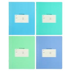 Тетрадь 12 листов в клетку, обложка мелованный картон, МИКС
