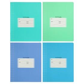 Тетрадь 12 листов в крупную клетку, обложка мелованный картон, МИКС