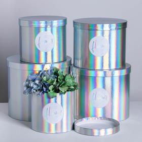 Набор шляпных коробок для цветов 5 в 1 с голографией «Нежность цветка», 14 × 13 см - 22 × 19,5 см