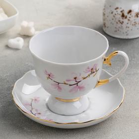 {{photo.Alt || photo.Description || 'Чайная пара «Цветок миндаля», 300 мл, отводка золотом, ф. Бутон'}}