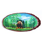 """Panels on the end of """"Bear in the woods"""", 60 cm, crushed stone, horizontal"""