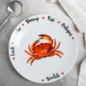 Тарелка мелкая 20 см Sealife МИКС