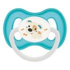 Пустышка силиконовая Canpol babies Bunny&Company, симметричная, от 6-18 месяцев, цвет бирюзовый