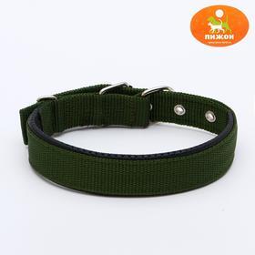 """Ошейник """"Комфорт"""" комбинированный (полиэстер, искусственная кожа), 55 х 2,5 см, темно-зелёный"""