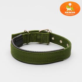 """Ошейник """"Комфорт"""" комбинированный (полиэстер, искусственная кожа), 58 х 3 см, темно-зеленый"""