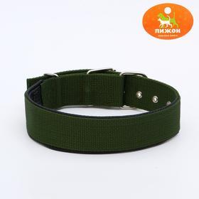 """Ошейник """"Комфорт"""" комбинированный (полиэстер, искусственная кожа), 60 х 4 см, темно-зеленый"""