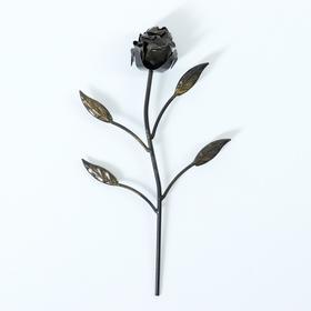 Роза большая
