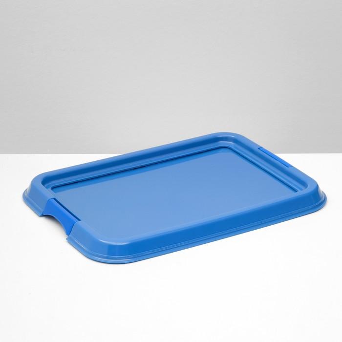 """Туалет под пеленку """"Дайна"""", 49 х 36 см, синий"""