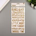 """Стикеры слова с золотым фольгированием Pebbles """"NIGHT NIGHT GIRL"""" 151 шт"""