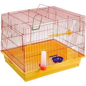 Клетка для птиц большая, прямая крыша, комплект, 50 х 31 х 41 см, жёлтый/красный
