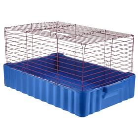 Клетка для кроликов № 4, 75 х 46 х 40 см, синий/фиолетовый