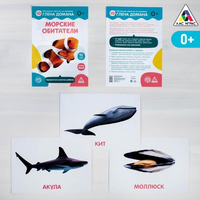 Обучающие карточки по методике Глена Домана «Морские обитатели», 12 карт, А5 - фото 1006445