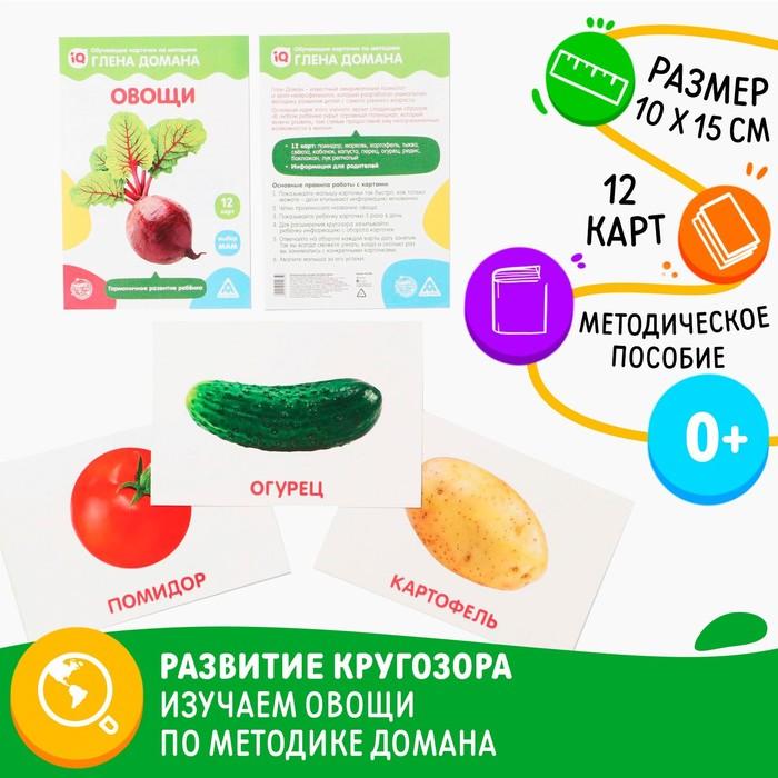 Обучающие карточки по методике Глена Домана «Овощи», 12 карт, А5 - фото 105496813