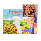 Картина по номерам на холсте 22 × 30 см, «Рычащий гепард»