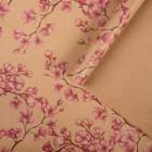 Paper, wrapping, Kraft Sakura 50x70 cm