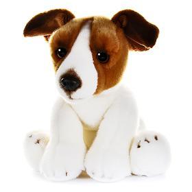 Мягкая игрушка «Собака Джек Рассел», 30 см