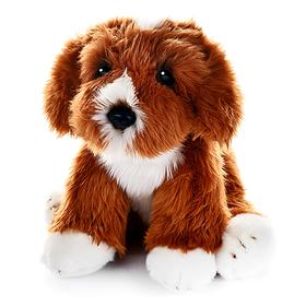 Мягкая игрушка «Собака Кавапу» , 30 см