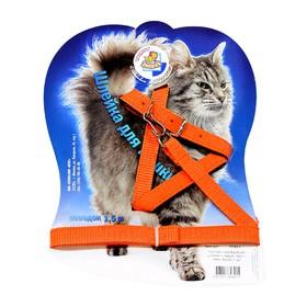 """Комплект для кошек """"Зооник"""", ширина 1,4 см, ОШ 20-28 см, ОГ 38-43 см, микс цветов"""