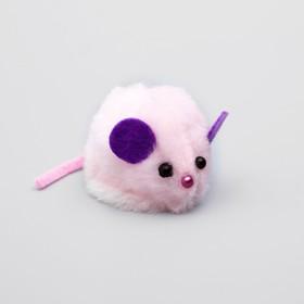 """Игрушка для кошачьей мяты """"Мышь"""", на липучке, 8 х 4,5 х 4,5 см, микс цветов"""