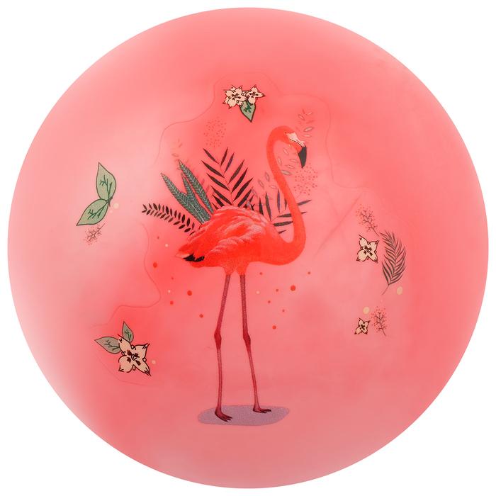 Мяч детский «Фламинго», d=22 см, 60 г, цвета МИКС - фото 76259055