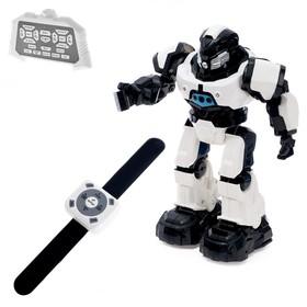 Робот интерактивный радиоуправляемый «Плуто», световые и звуковые эффекты, цвет белый