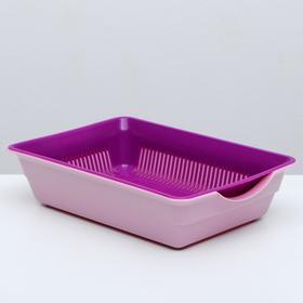 Туалет глубокий с сеткой, 36 х 26 х 9 см, розовый/пурпурный