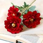 """Цветы искусственные """"Анемоны крупные"""" 11*60 см, красный - фото 4455437"""