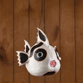 """The news of the """"Fish-tomato"""" hanging 33х26х26 cm"""