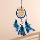 "Dreamcatcher ""Harmony"" blue 6х0,5 × 20 cm"