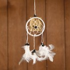 "Dreamcatcher ""Harmony"" white 6х0,5 × 20 cm"