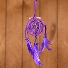 "Dreamcatcher ""Peace of mind"" lilac (purple feathers) 6х0,5 × 20 cm"
