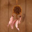 "Dreamcatcher ""Peace of mind"" brown 6х0,5 × 20 cm"