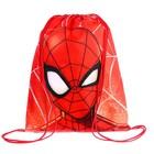 Сумка для обуви Spider-man, 35 х 42 см, Человек-паук