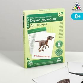 Обучающие карточки по методике Глена Домана «Динозавры», 12 карт, А6, в коробке