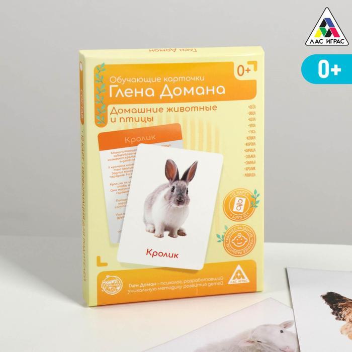 Обучающие карточки по методике Глена Домана «Домашние животные и птицы», 12 карт, А6, в коробке - фото 105496911