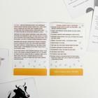 Обучающие карточки по методике Глена Домана «Домашние животные и птицы», 12 карт, А6, в коробке - фото 105496915