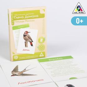 Обучающие карточки по методике Глена Домана «Птицы России», 12 карт, А6, в коробке