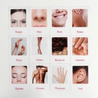 Обучающие карточки по методике Глена Домана «Части тела», 12 карт, А6, в коробке - фото 105497015