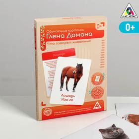 Обучающие карточки по методике Глена Домана «Что говорят животные?», 12 карт, А6, в коробке