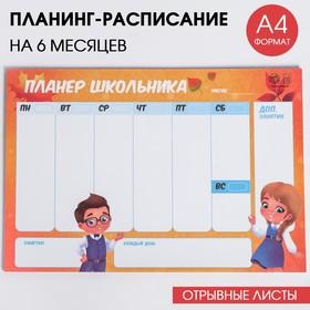 """Планинг-расписание """"Школа"""", 30 листов"""