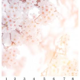 Панель потолочная PANDA Сакура панно 4114 (упаковка 8 шт.), 3х2 м