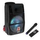 Портативная караоке система MAX Q81, 30 Вт, FM, AUX, micro SD, USB, BT, Li-Ion 6600 мАч