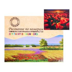 Картина по номерам на холсте «Закатные маки» 40х50 см