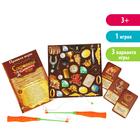 Настольная игра «Сокровища карибского моря», с магнитными удочками, в пакете